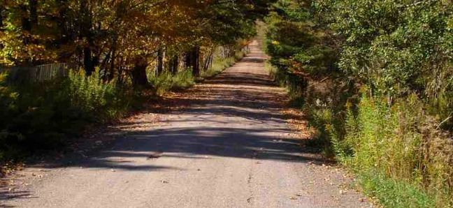 Road Kill: A Love Story, is a romantic, comic adventure rooted in the gorgeous Catskill Mountains of upstate New York. Although the beautiful landscape and history is in part a